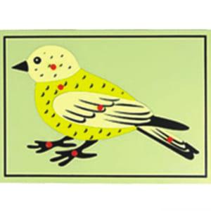 Bộ xếp hình chim