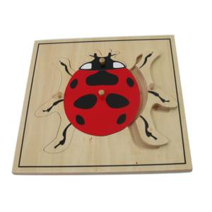 Ghép hình con bọ rùa