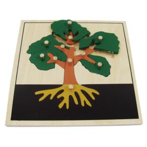 Ghép hình thân cây