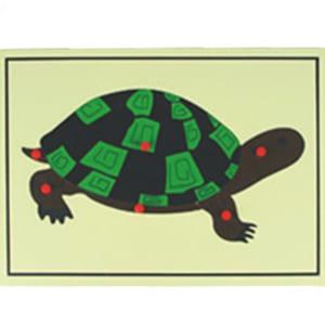 Ghép hình con rùa mầm non
